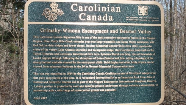 Carolinian Canada Sign, Beamer Memorial Conservation Area, Grimsby