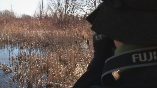 Jean takes a picture of Muskrat swamp