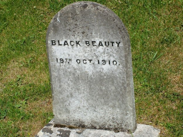 black beauty gravestone - powerscourt - wicklow - ireland