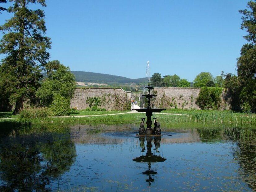 dolphin pond - powerscourt - wicklow - ireland