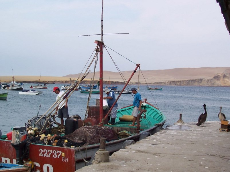 Lagunillas Fishermen prepared to headout to sea - national reserve of paracas - peru