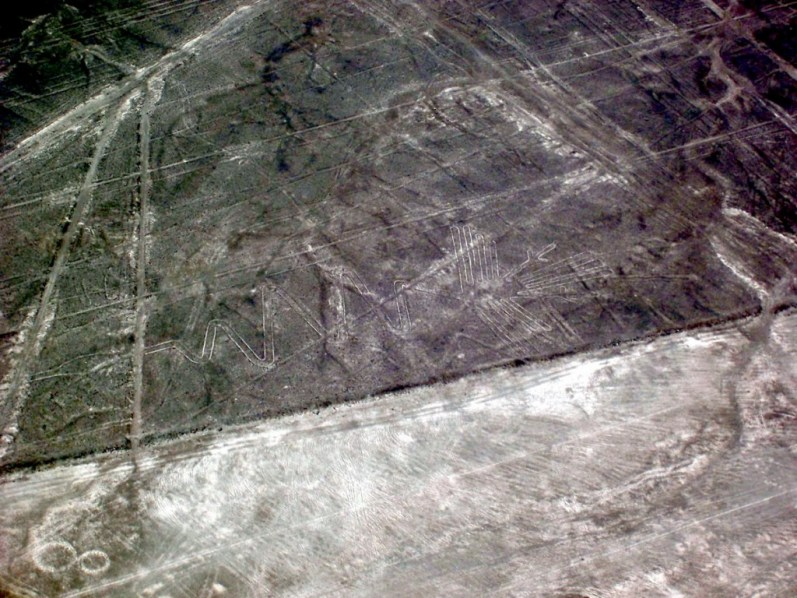 aerial view of - alcatras - geoglyph at nazca lines of peru - south america