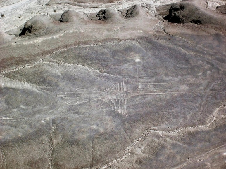 aerial view of - humming bird - geoglyph at nazca lines of peru