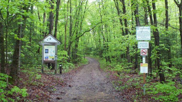 beetle lake trail - spring - oxtongue lake - ontario
