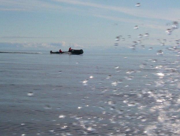 boat underway - pangnirtung fjord - baffin island - nunavut
