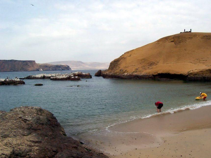 bob washes off sand - national reserve of paracas - peru