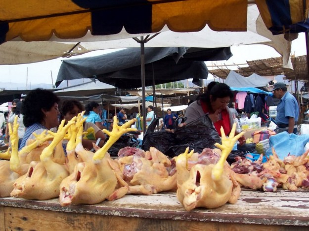 Chickens for sale in the street market in Nazca, Peru