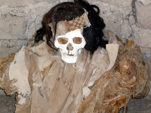 mummified human body with hair - chauchilla cemetery - peru