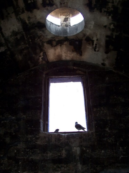 Birds sit at window at Santa Catalina Monastery, Arequipa, Peru