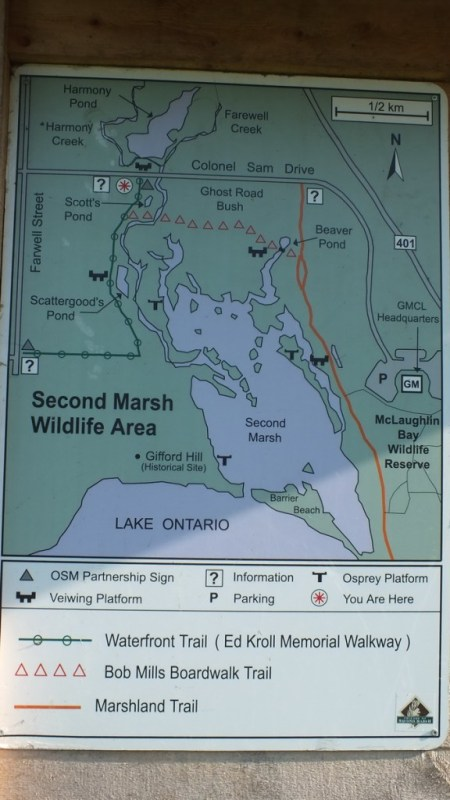 Second Marsh Trail Map - Oshawa - Ontario