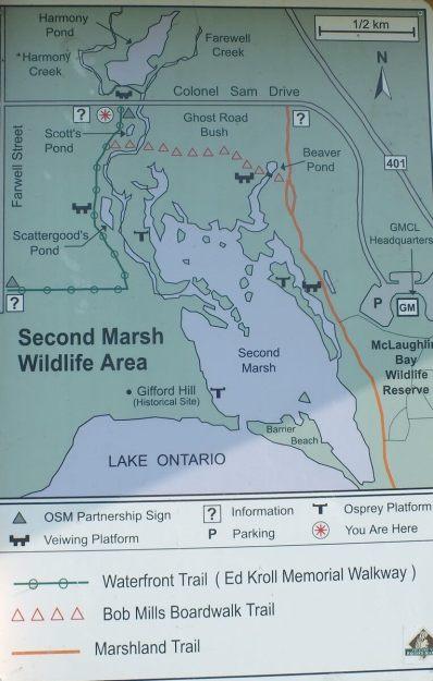 Second Marsh map - oshawa - ontario