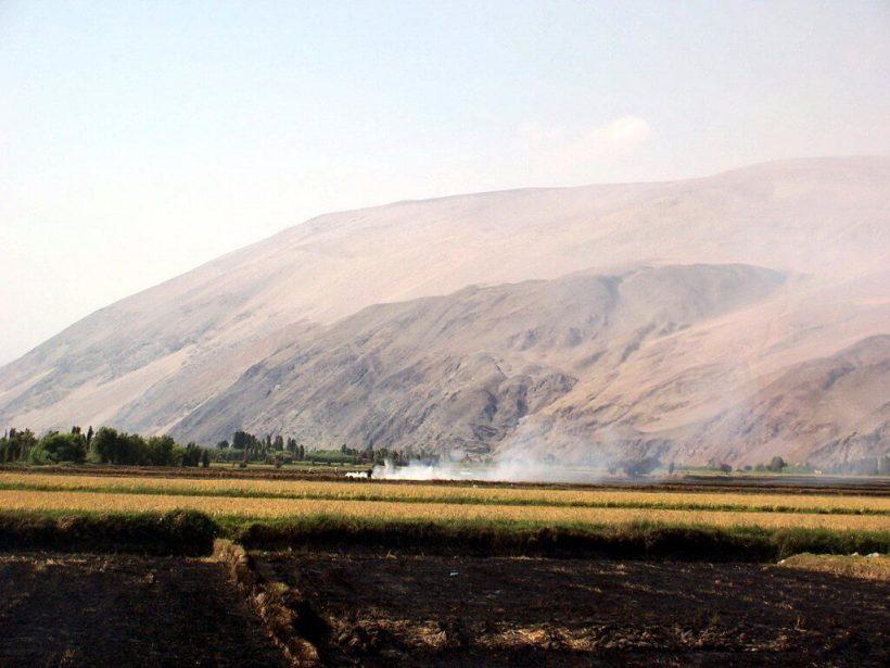 burning fields at camana - peru