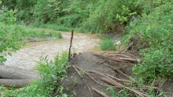flooded green river - whitevale - ontario