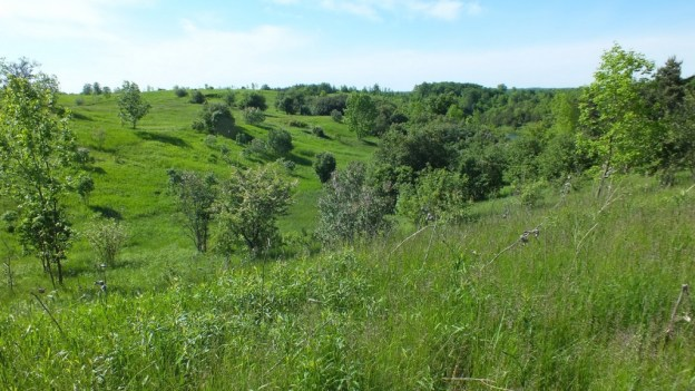 hills above kettle lake - forks of the credit provincial park - ontario