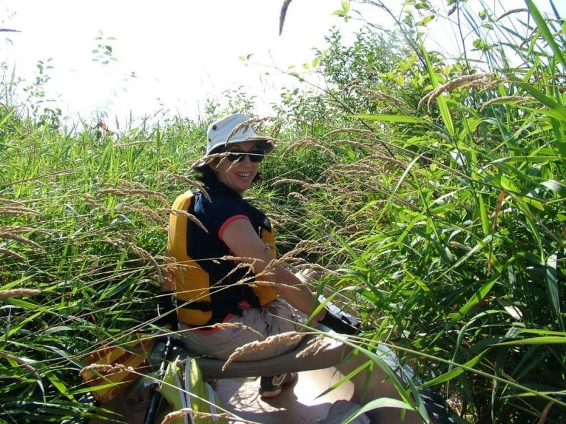 canoe route through minesing swamp, ontario