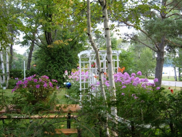 flower gardens at oxtongue lake - ontario - frame to frame bob & jean
