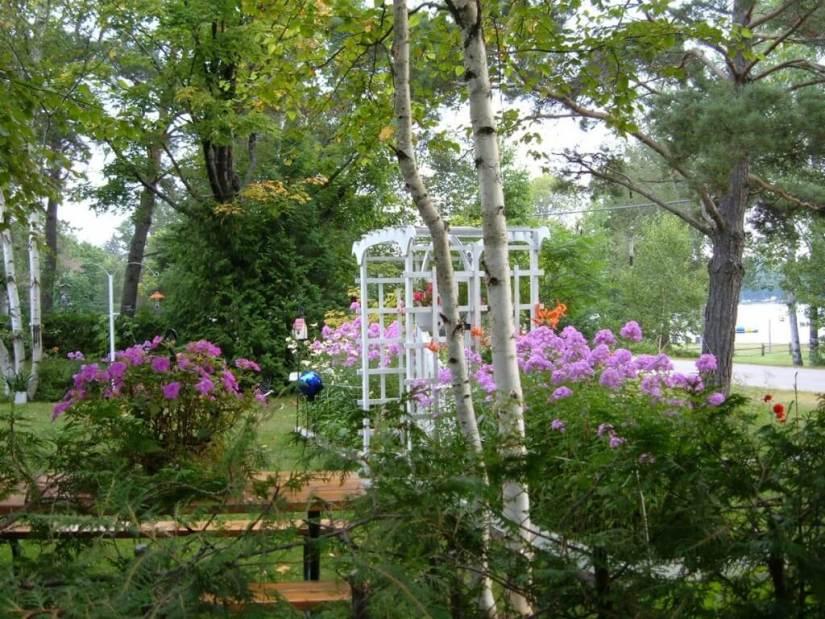 flower gardens at oxtongue lake - ontario - frame to frame bob & jean