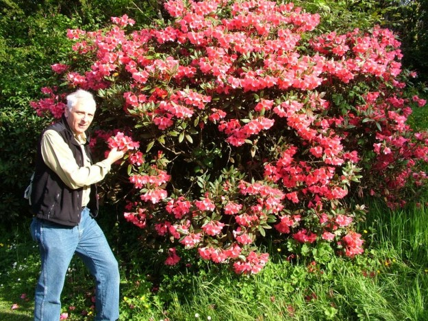 Bob standing beside a flowering Azalea bush at Blarney Castle in County Cork, Ireland
