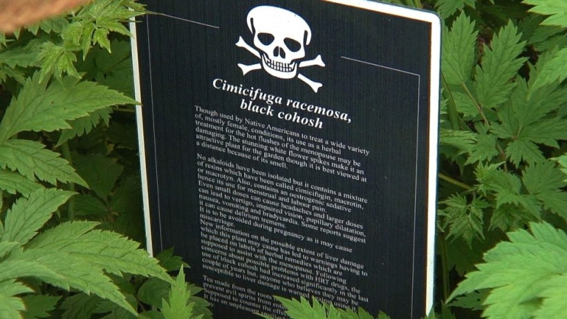 Black Cohosh sign in the Poison Garden at Blarney Castle in County Cork, Ireland