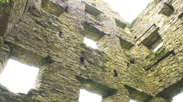 wall of windows, coppingers court ruins, ireland