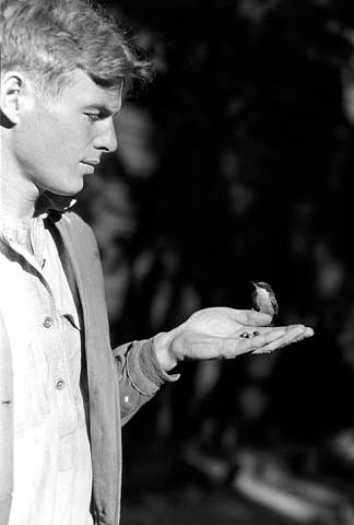Edwin McKee with a Pygmy Nuthatch at Grand Canyon National Park in Arizona, USA