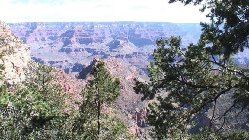grand canyon on south rim