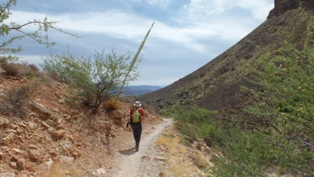 bob hiking on plateau point trail 2a