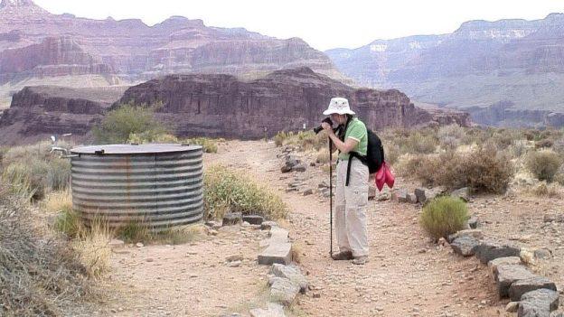 jean on plateau point trail