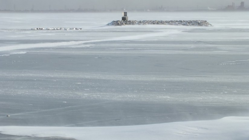 trumpeter swans near island on ice - la salle park - burlington - ontario 3