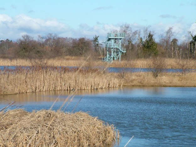 Bird observation tower at Reifel Migratory Bird Sanctuary in Delta, BC, Canada.
