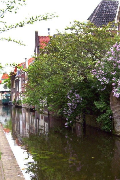 canal with flowers in delft - the netherlands