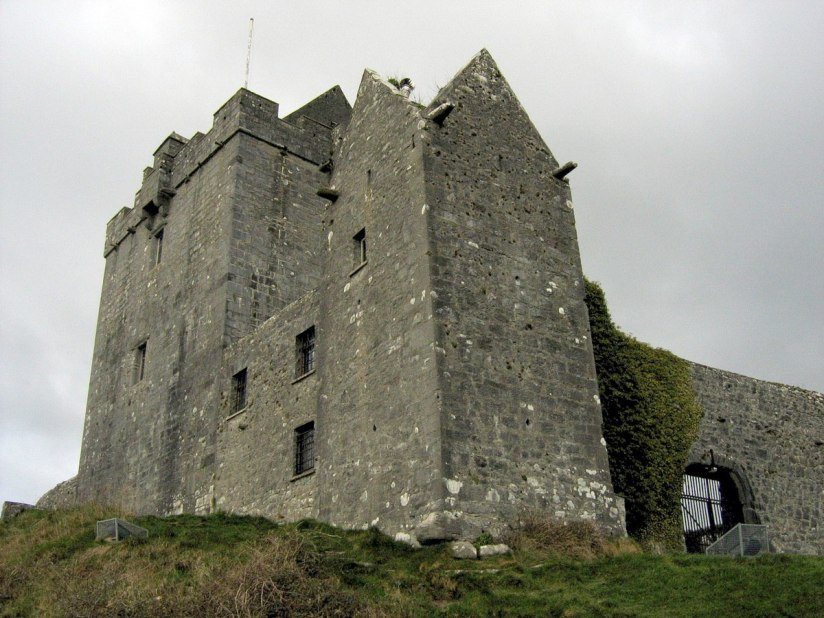 Dunguaire Castle walls - ireland