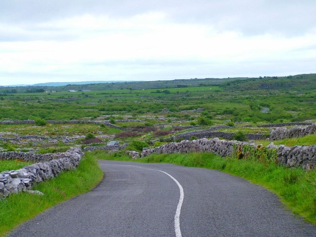 burren stone fences along roadway - the burren - ireland