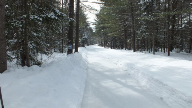 The ice skating trail at Arrowhead Provincial Park near Huntsville, Ontario, Canada
