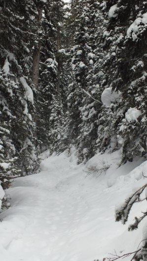 Lake Agnes snowshoe trail at Banff National Park, in Alberta, Canada