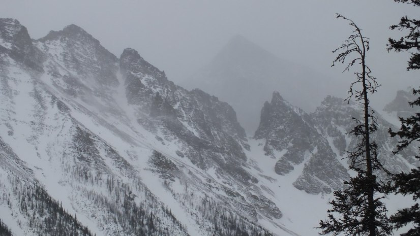 Snows falling on Mount Aberdeen in Banff National Park, in Alberta, Canada