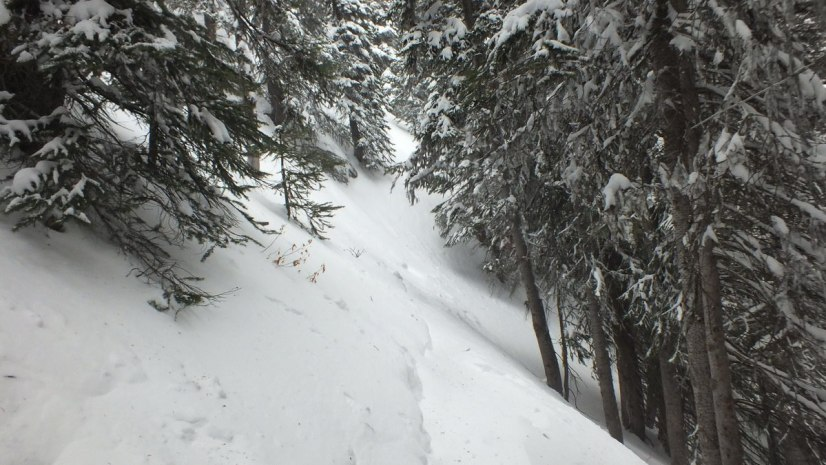 Snowed under trail near Lake Agnes in Banff National Park, in Alberta, Canada