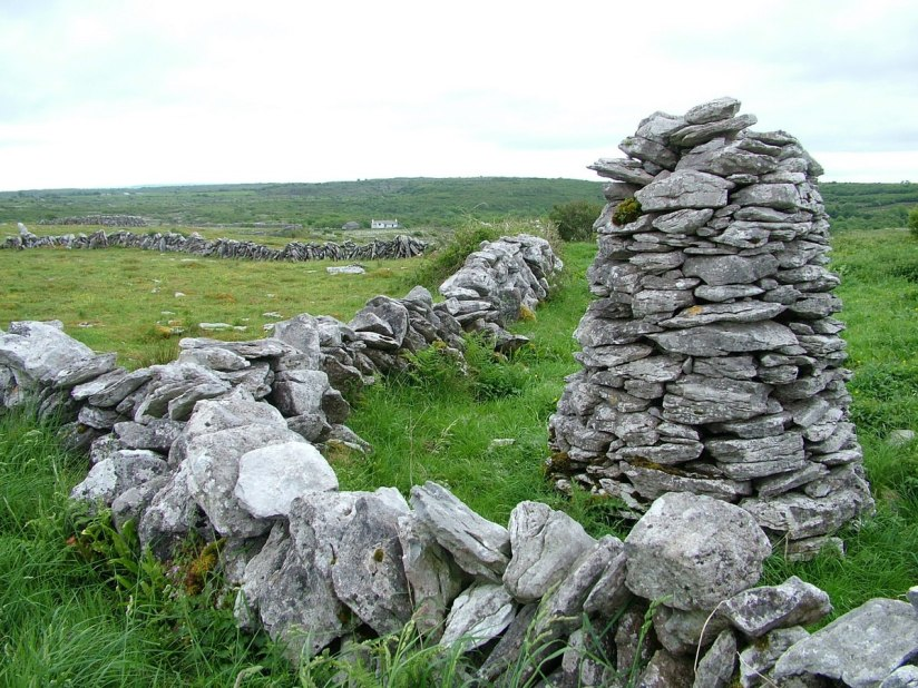 stone fence and tower - burren national park - ireland