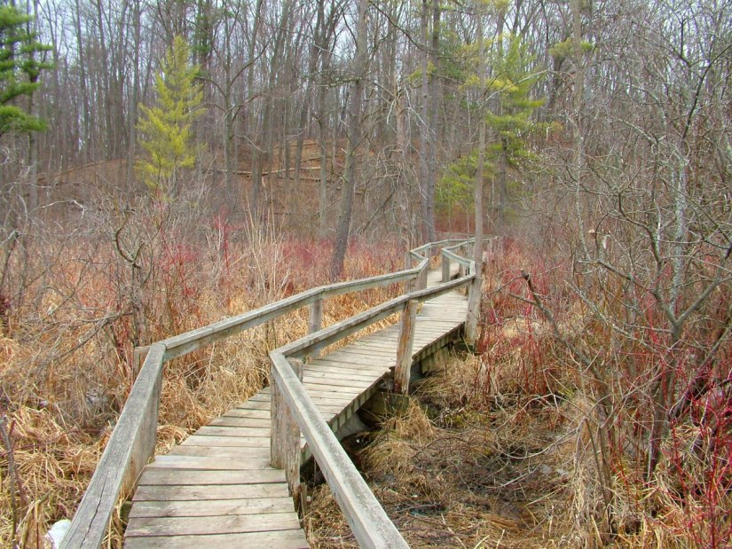 broadwalk at dickson Conservation area_ontario