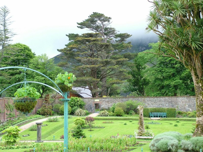 An image of some of the tall trees and stone walls in the Victorian Walled Garden at Kylemore Abbey in County Galway, Ireland. Photography by Frame To Frame - Bob and Jean.