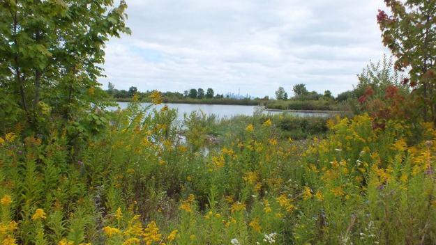 toronto viewed from colonel sam smith park - etobicoke - toronto - ontario 10