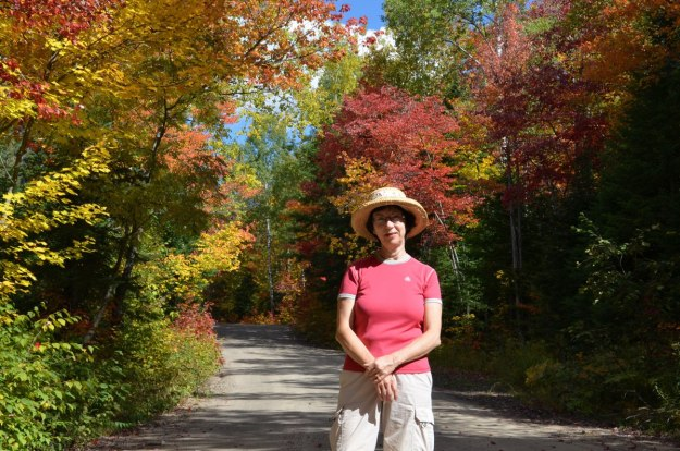 fall colors in algonquin park - fall 2014 - pic 7