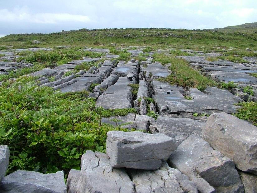 An image of the karst limestone on Inishmore Island, in Ireland. Photography by Frame To Frame - Bob and Jean.