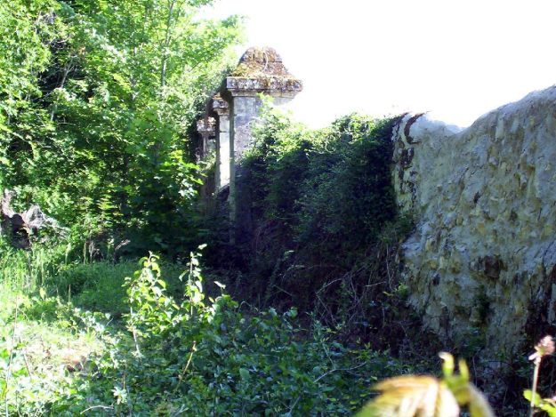 An image of a stonewall fence on the border of Chateau de la Bourdaisiere in the Loire Valley in France.