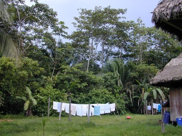 Clothes lines at Sandoval Lake Lodge, Lake Sandoval, Amazon Basin, Peru