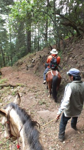 horseback riding at cerro pelon butterfly sanctuary - mexico 5
