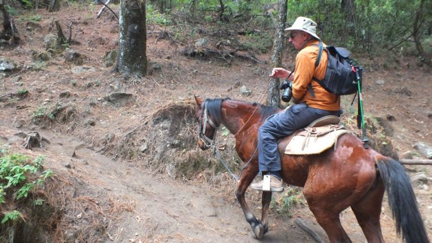 Bob riding a horse to Cerro Pelon Monarch Butterfly Sanctuary, near Macheros, Mexico