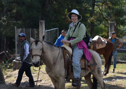 horseback riding at cerro pelon butterfly sanctuary - mexico