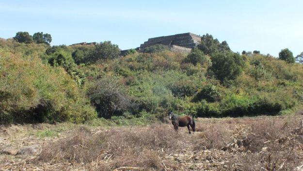 pyramids of san felipe de los alzati, zitacuaro, mexico 5
