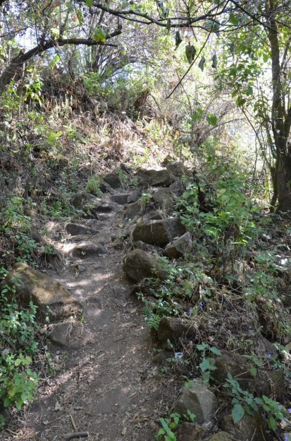 trail to pyramid of san felipe de los alzati, zitacuaro, mexico 4
